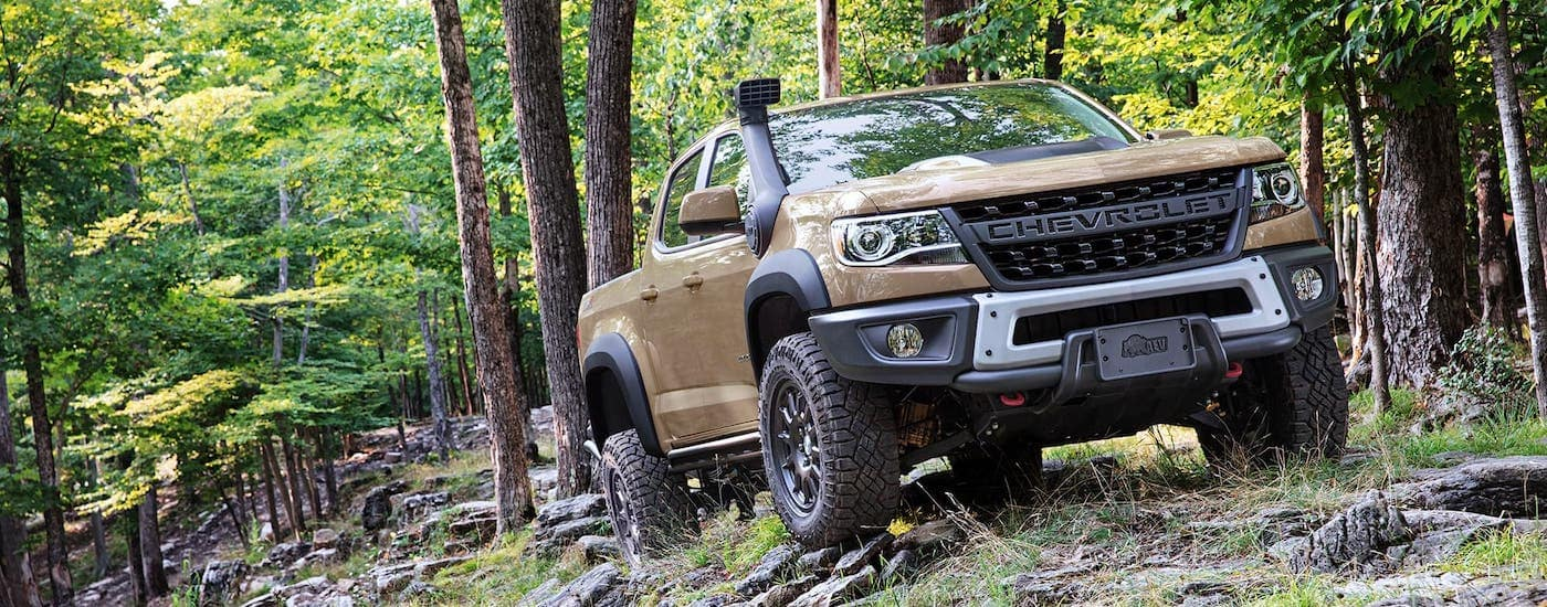 A brown 2021 Chevy Colorado ZR2 Bison is shown driving through the woods.