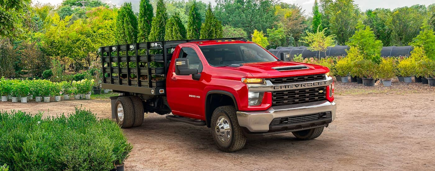 A red 2021 Chevy Silverado 3500 HD Chassis Cab is parked in the middle of a plant nursery.