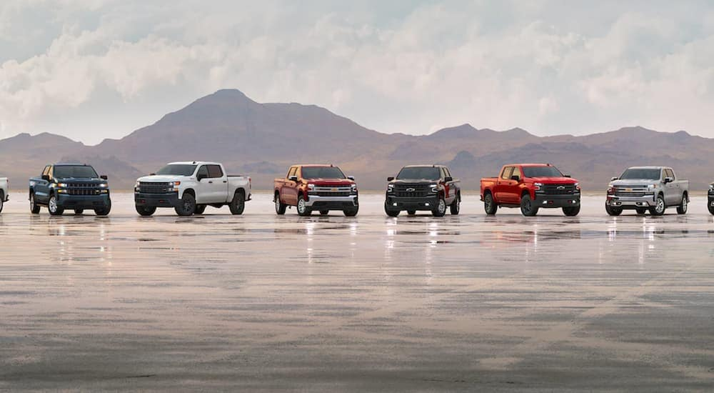 A line of 2021 Chevy Silverado 1500s are parked on an air strip after leaving a Lexington Silverado dealer.