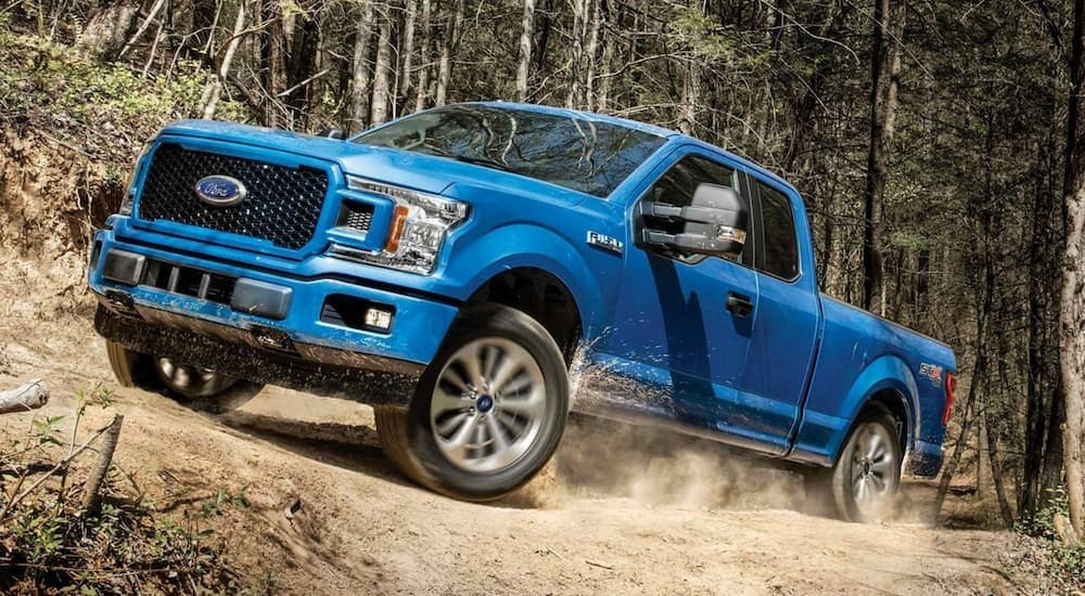 A blue 2019 Ford F-150 is shown off-roading in a dirt field after leaving a used auto dealer in Lexington.