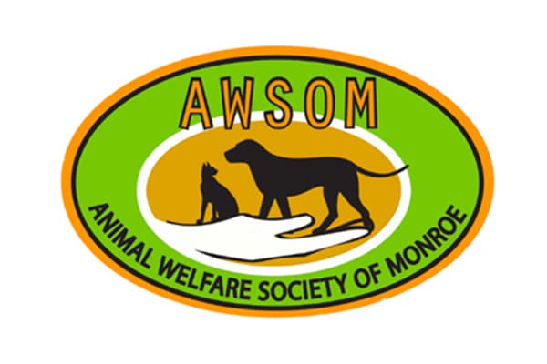 AWSOM