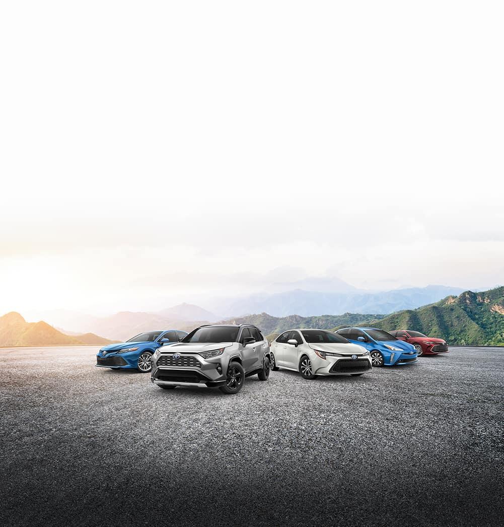 Halterman's Toyota is a Toyota Dealership near Arlington Heights PA | 2019 Toyota models line-up