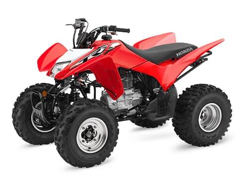 Honda_0007_TRX250X