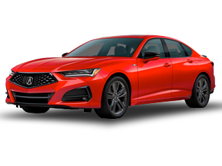 2021TLX