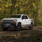 Chevrolet Silverado 1500 Crew Cab Custom [1CX] Trail Boss
