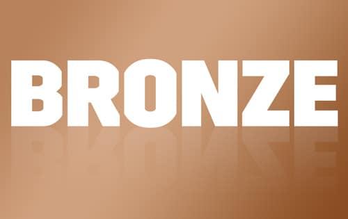 Bronze Detailing Package